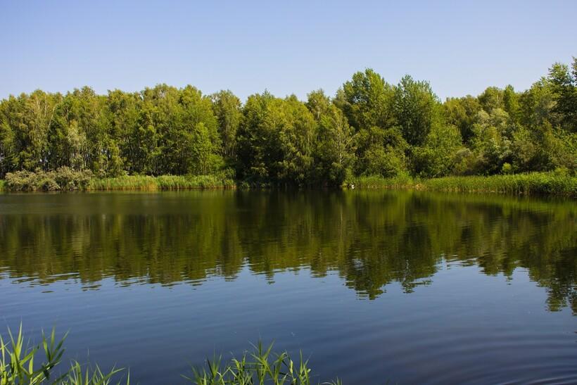 Озеро в Беларуси