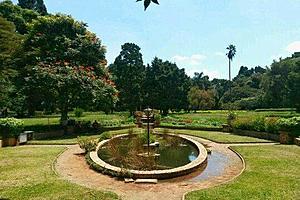 Сады Хараре