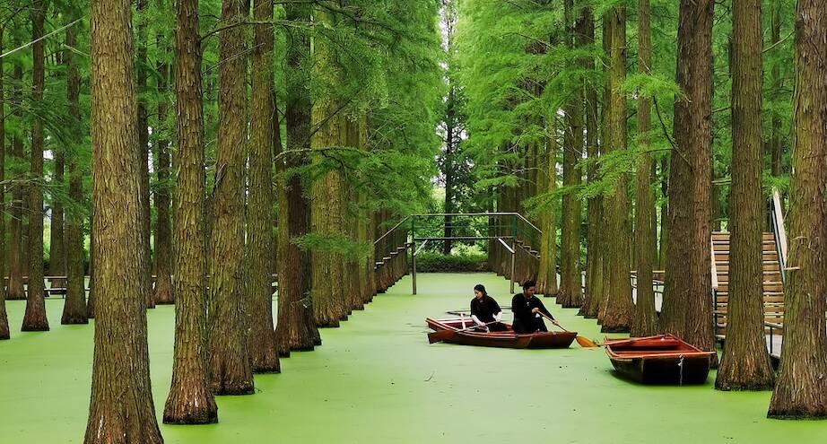 Фото дня: парк на воде в Китае